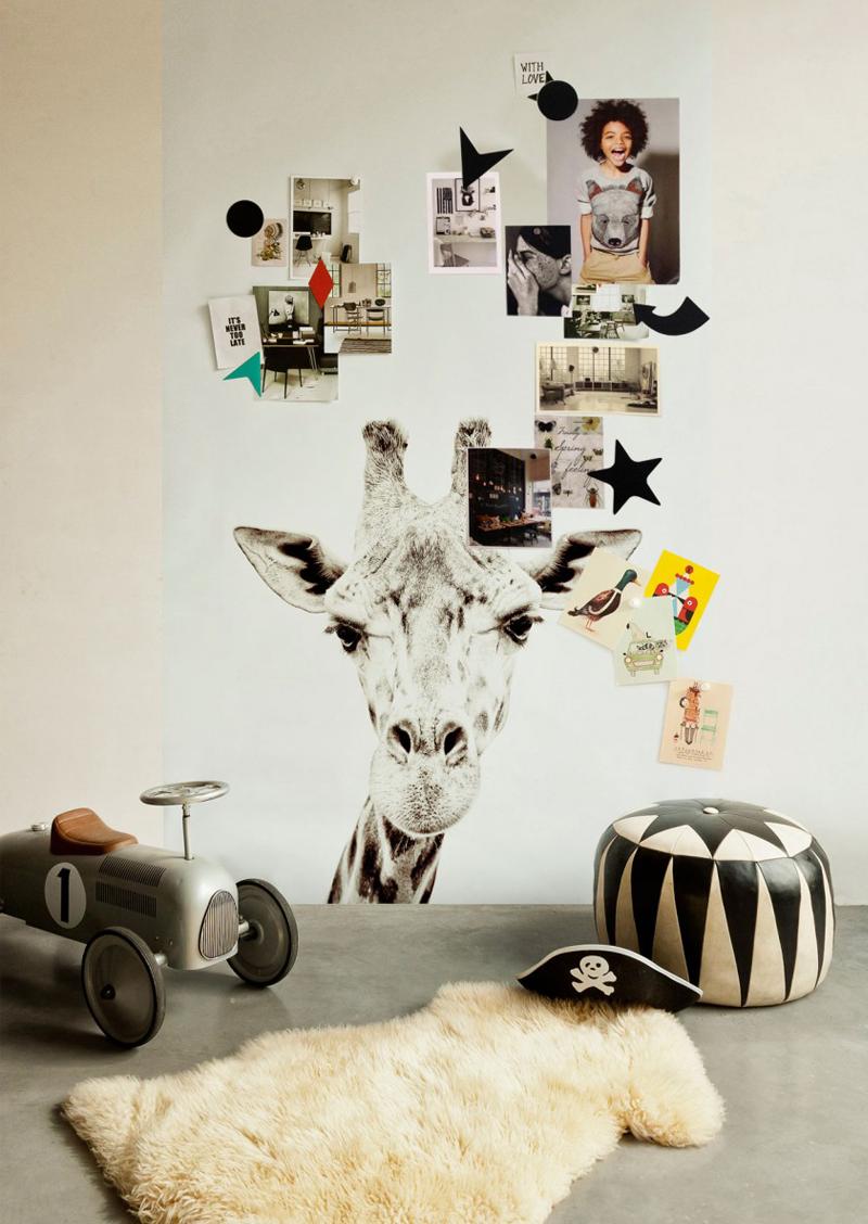 safari theme boysroom