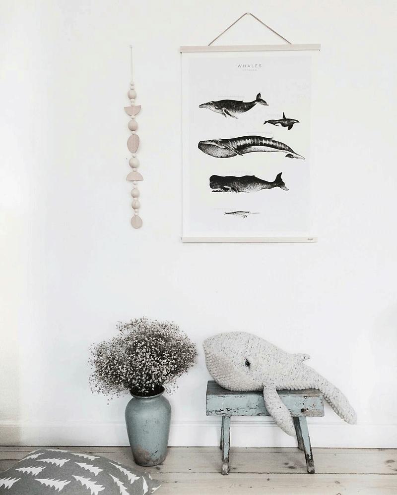 whale plushtoy