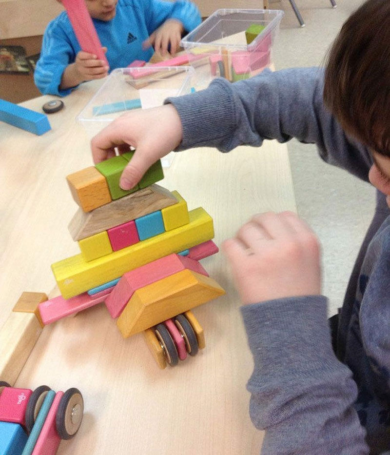 tegu building blocks