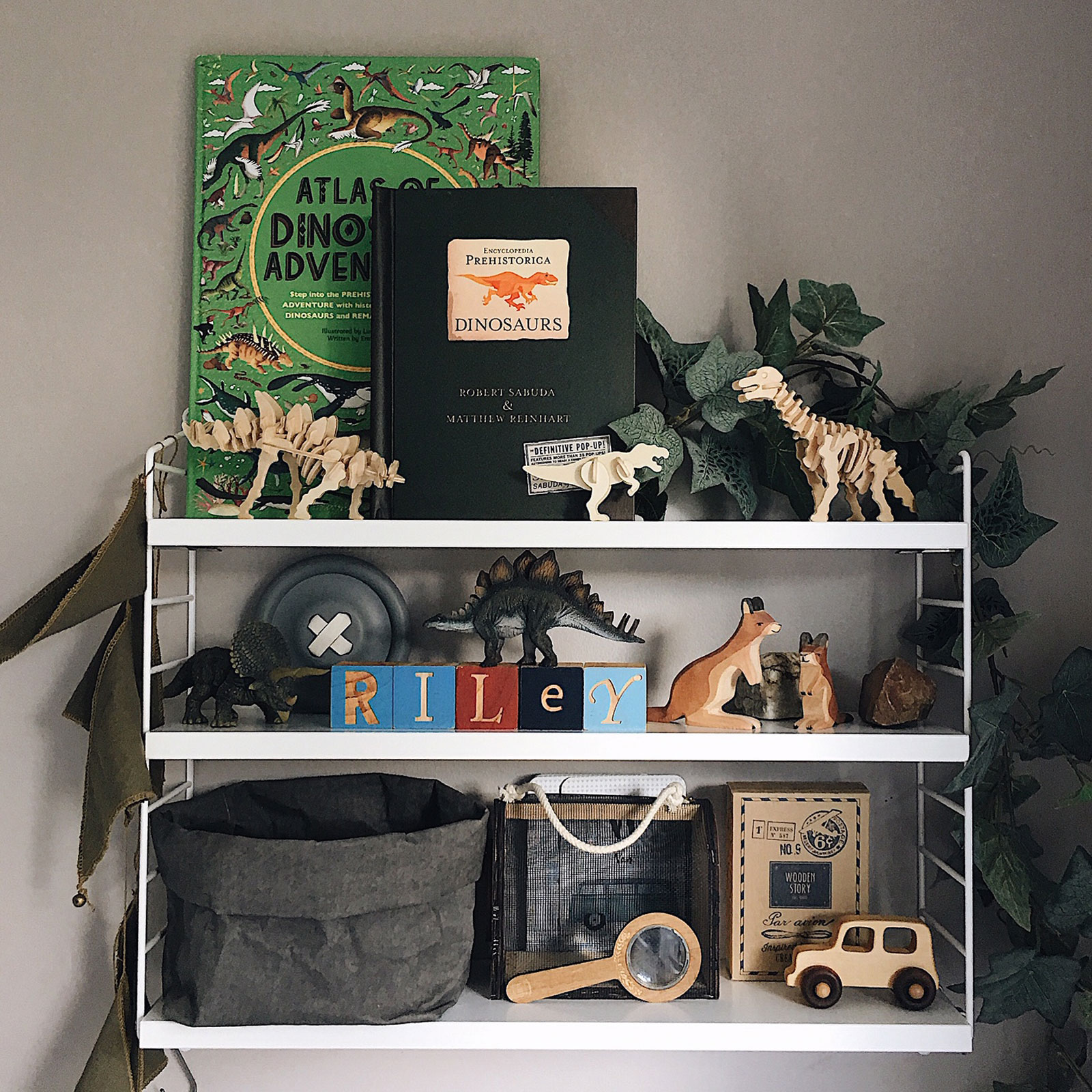 shelfie idea boy's room