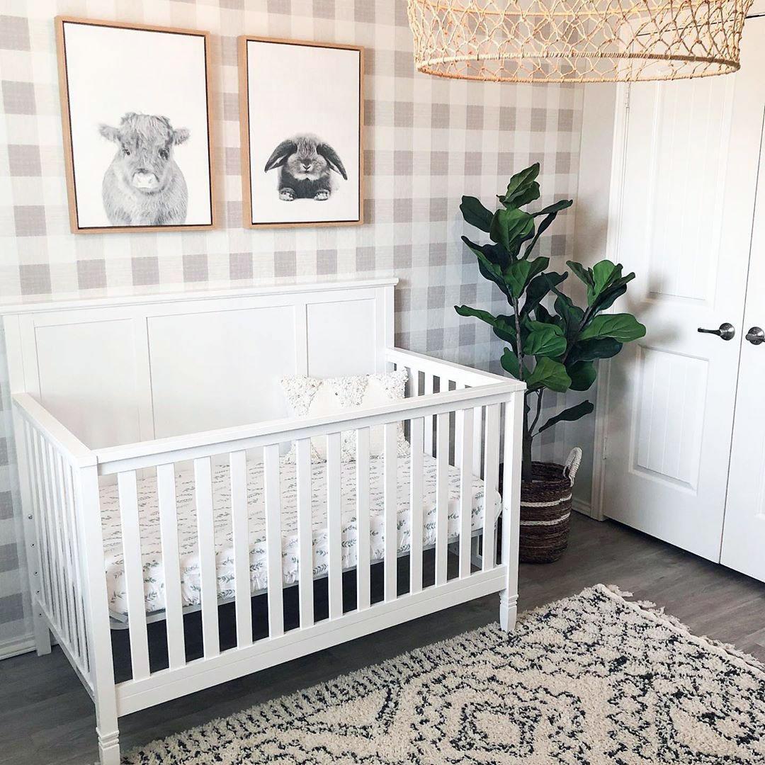 green plants in baby nursery