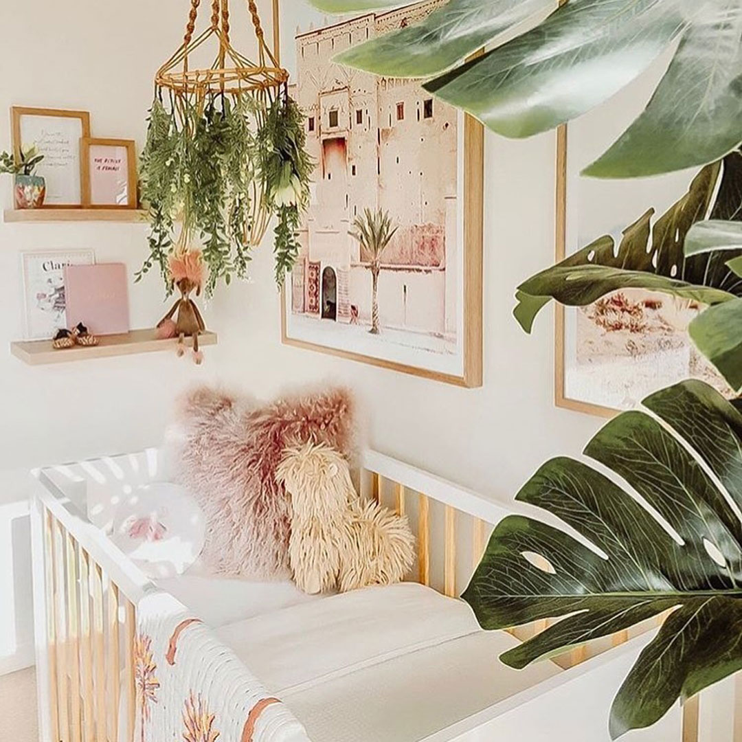 fresh plants baby nursery