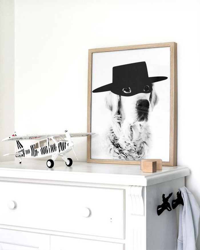 dog with zorro mask poster